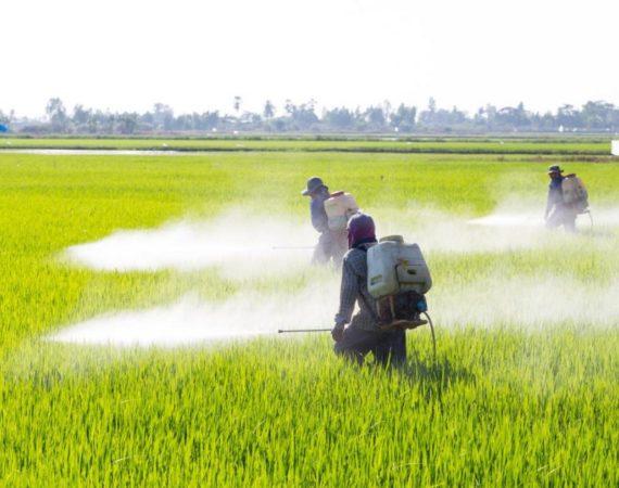commissione pesticidi