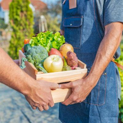 agricoltura_generica