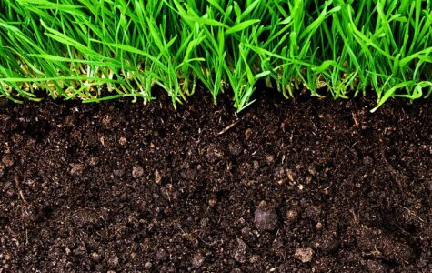 800px-Agriculture_Soil_Image-