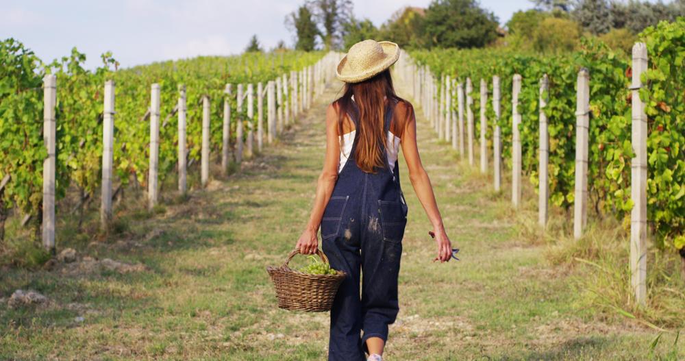 pesticidi donne