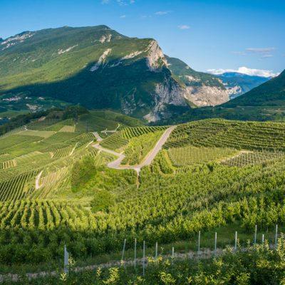 Biodistretto Trentino
